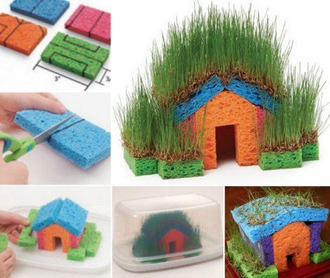 Diy little grass house kid s project to make a sponge for Fun projects for kids to do at home
