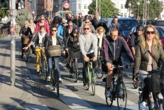 Who wouldn't want this? The joys of cycling in Copenhagen