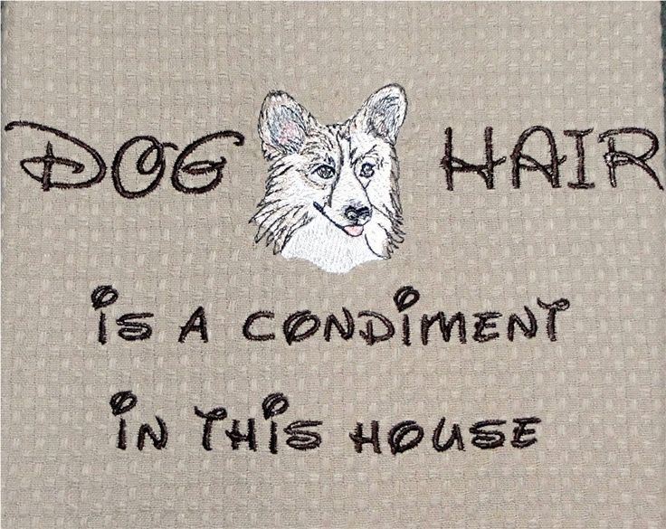 ...: Cat, Teas Towels, Dogs Day, Dogs Hair, Pet, Pembroke Welsh Corgi, Houses Guest, Hot Dogs, Animal