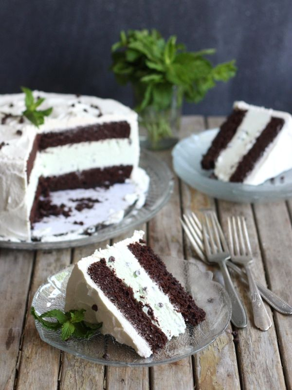 Mint Chocolate Chip Ice Cream Cake from completelydelicious.com