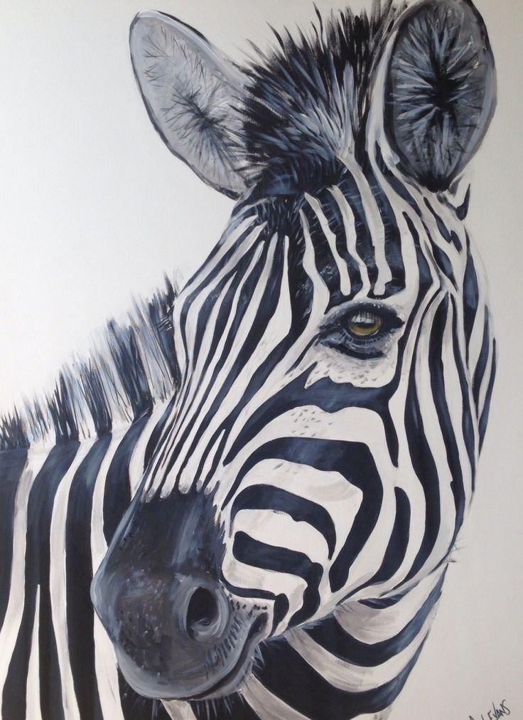 Ziggy still available from Q Gallery Strathalbyn.