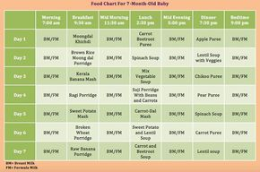 7 month old feeding schedule
