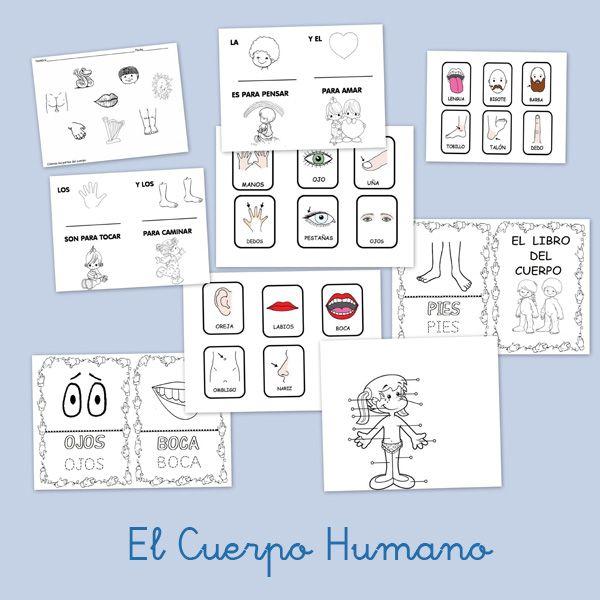 Recursos para el aula: El cuerpo humano