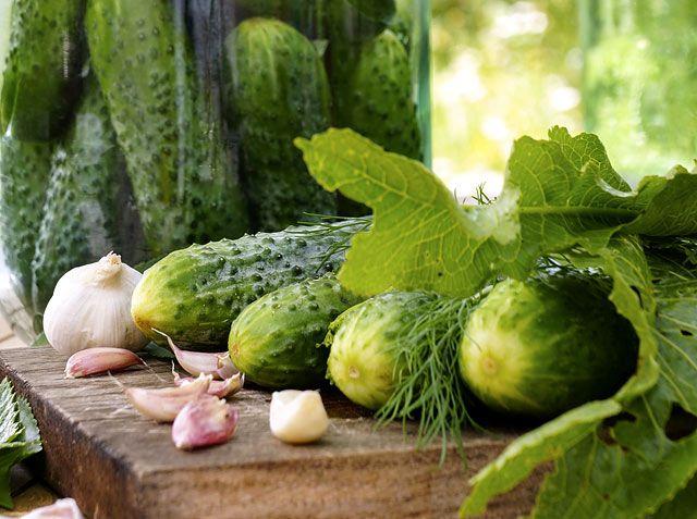 Hogyan marad szép zöld színű, ropogós az eltett ecetes uborka? Íme a titok…