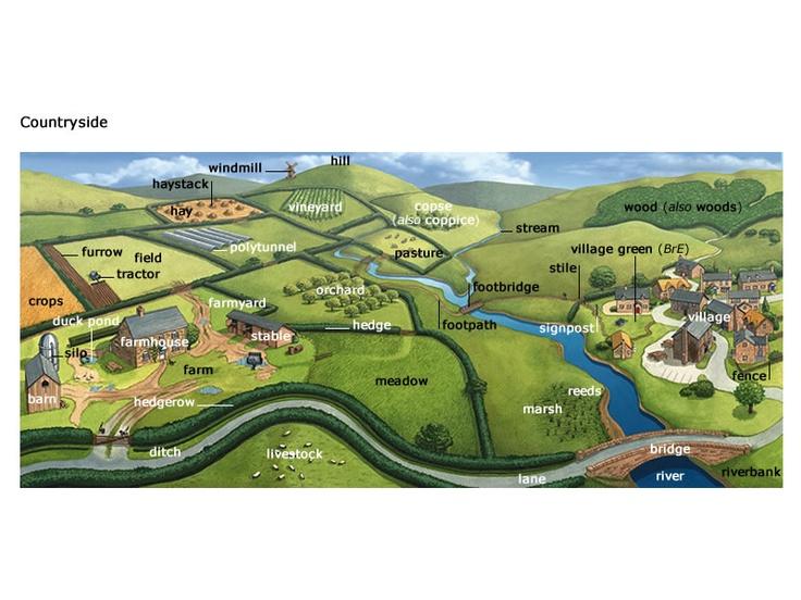 Resultado de imagem para countryside vocabulary