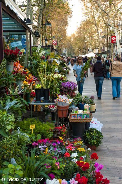 Barcellona - Ramblas....my favorite city street..always wonderful