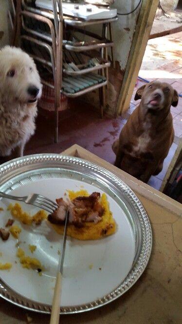 Desayunando con mis hijos
