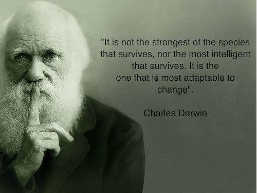 It is not the strongest of the species that survives, nor the most intelligent that survives. It is the one that is most adaptable to change.