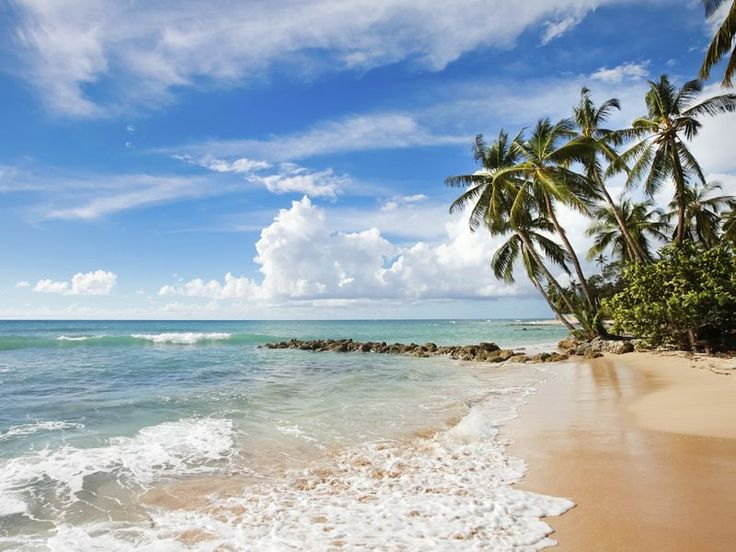 Top 10 things to do in Barbados | Caribbean travel inspiration