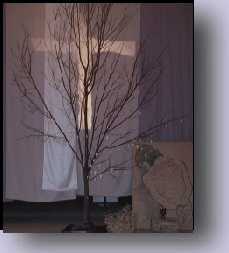 Lent - beautiful image
