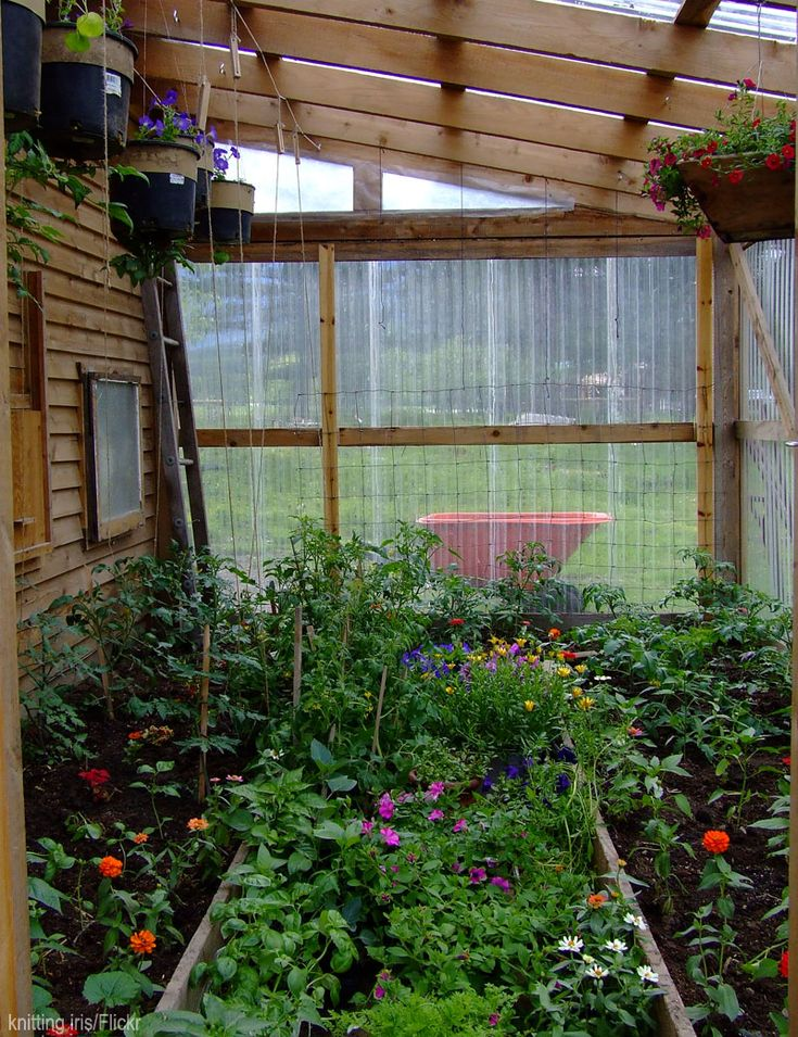 best 20 small greenhouse ideas on pinterest