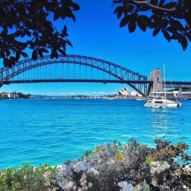 Sail Sydney Harbour or watch boats go by under the shade of the trees at Blues Point Reserve. Pack a picnic and enjoy the beautiful views of our beautiful city