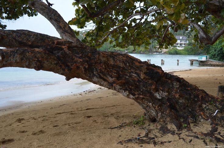 Jamaica, Ocho Rios beach