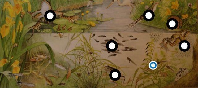 Interactieve praatplaat: Van dril tot kikker by ingrid