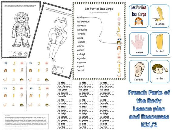 French Parts of the Body Lesson Plan and by FrenchResourcesByJo