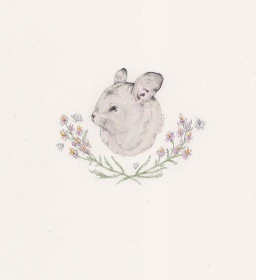 Emblem: Nice Illustrations, Art Illustrations Ii, Rabbit Prints, Art Inspiration, Artists Inspiration, Chinchillas, House, Animal Portraits, Sarah Mcneil