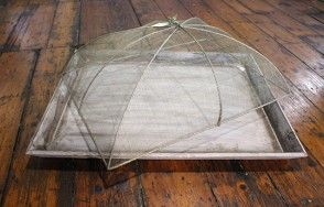 Wooden tray with food cover