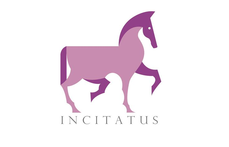 INCITATUS on Behance