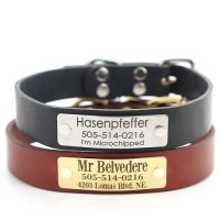 Classic Personalized Leather Dog Collar with Engraved Nameplate