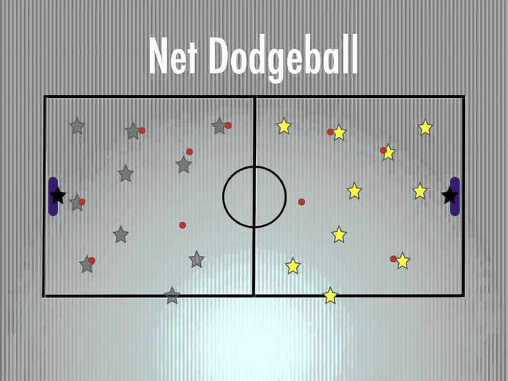 Physical Education Games - Net Dodgeball