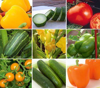 Preplanned Vegetable & Herb Gardens