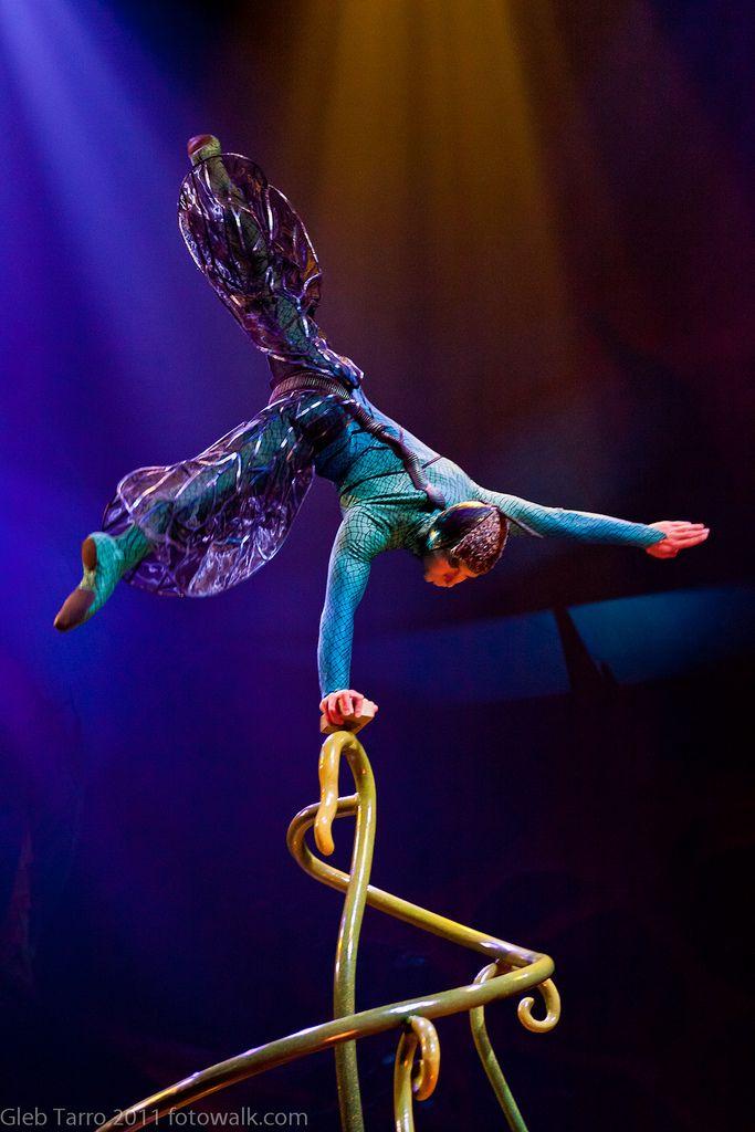 Cirque Du Soleil, OVO, Jan.2011                                                                                                                                                     More