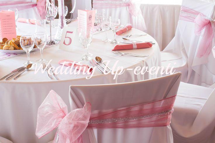 Organza rosa ed argento
