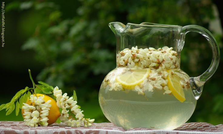 Ezt fald fel!: Akácvirág-limonádé, a hűsítő és egészséges ital