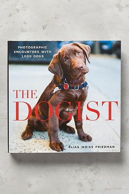 24 best Library Dogs images on Pinterest Anthropologie