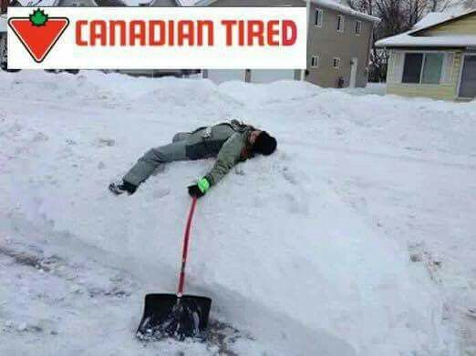 Lol canadians get it