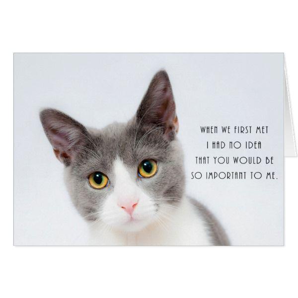 Cute Kitten Cat Romantic Love Birthday Card Zazzle Com Cat