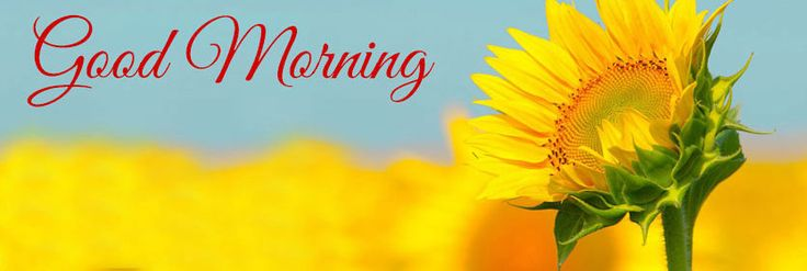 Happy Cute Good Morning Monday FaceBook Cover, Cofee, Tea, Images, Tuesday, Wednesday, Thursday, Friday, Saturday, SMS, Messages, Quotes, Beach Wallpapers