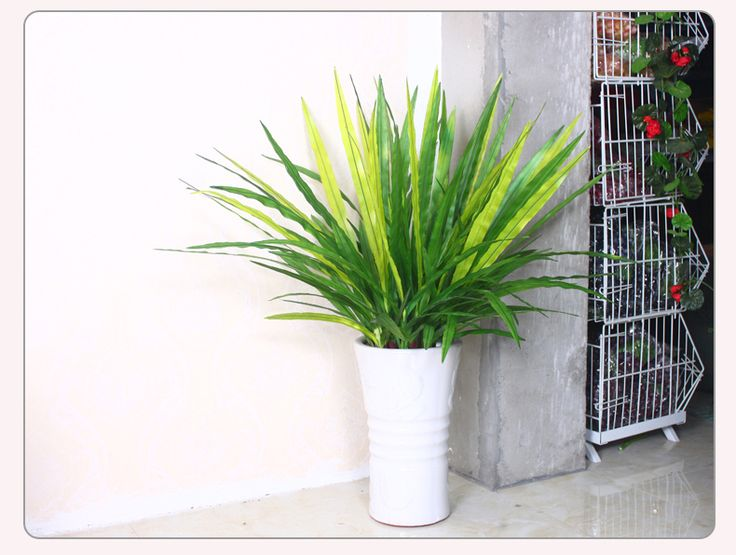 17 id es propos de plante artificielle exterieur sur for Plantes decoratives exterieur