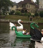 Best 25 Paddle Boat Ideas On Pinterest Build Your Own