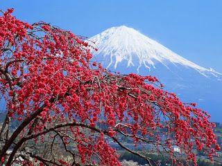 Menyusuri Tempat Wisata Di Jepang Yang Menawan