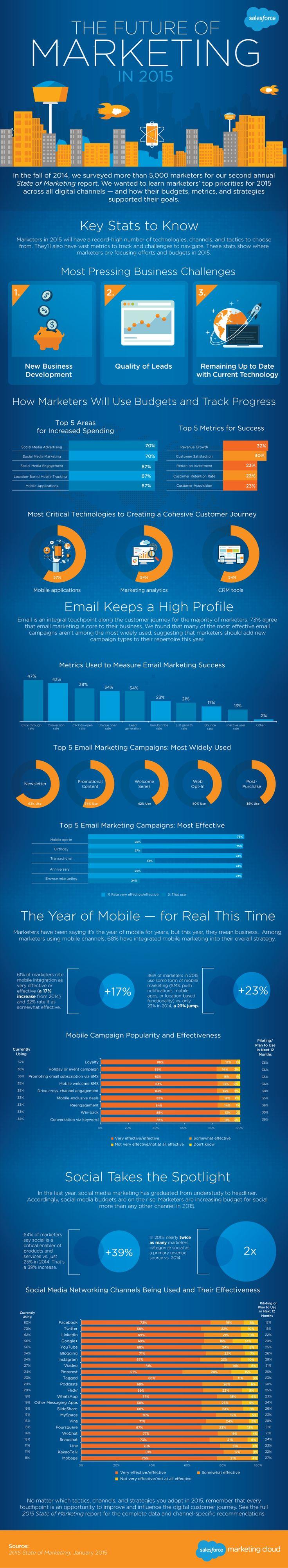 We Surveyed 5,000+ Marketers. Here's What They Said About Marketing in 2015 | @salesforce  #infographic #marketing