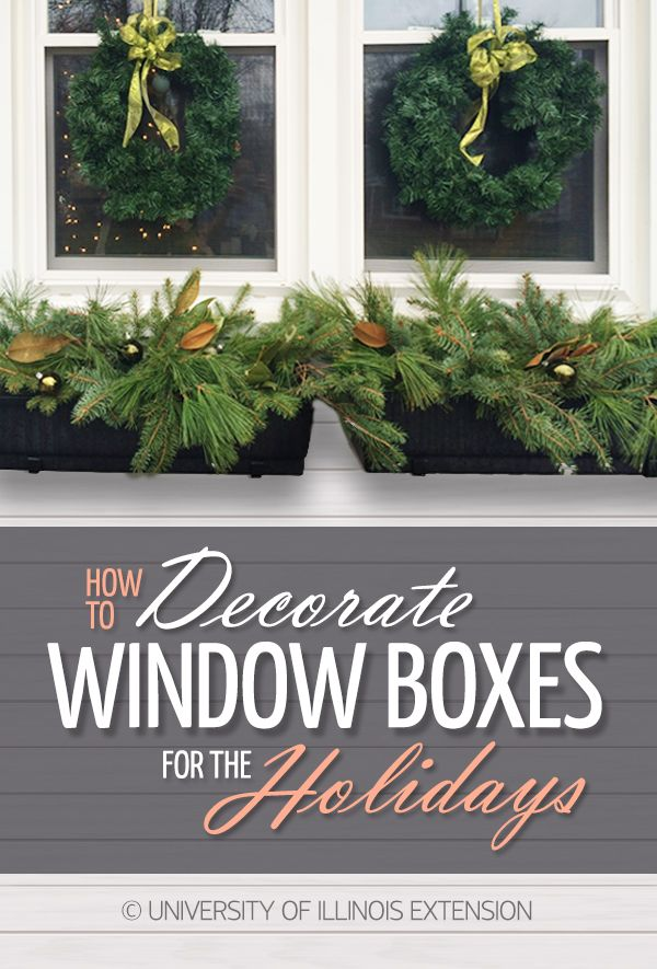 How To Decorate Window Boxes For The Holidays Winter Diy Decor