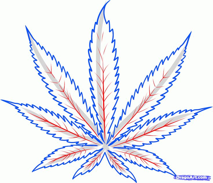 weed stencil leaf wwwpixsharkcom images galleries