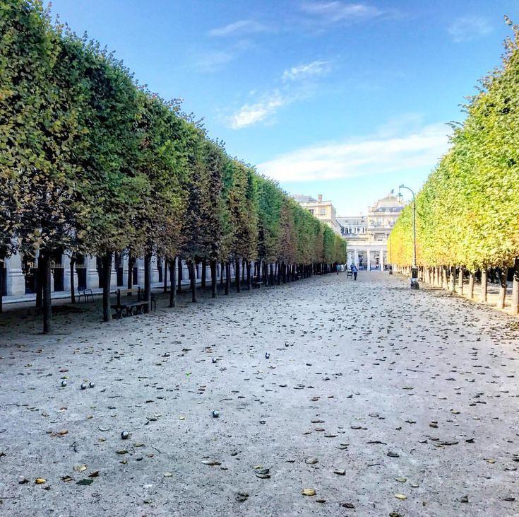 "11 Likes, 1 Comments - Sarah Murdoch (@adventureswithsarahm) on Instagram: ""Peace in the middle of a busy city - - #paris #parigi #parisian #palaisroyal #france…"""