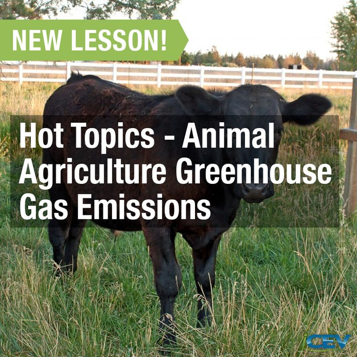 New Agricultural Science Curriculum   Hot Topics   Animal Agriculture  Greenhouse Gas Emissions