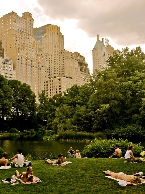 Hanging out in Central Park