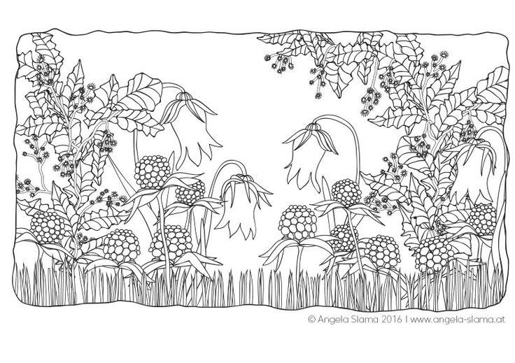 11 best Wunderblumen - Ausmalbilder images on Pinterest ...