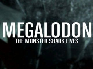 Internet Officially Mad at Shark Week for Airing a Fake Megalodon Documentary