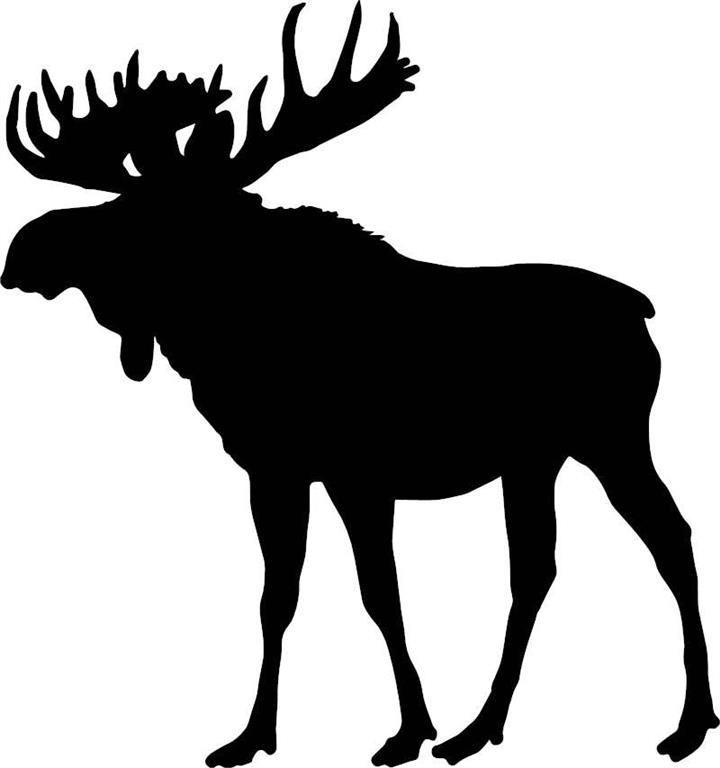 Älg Elk Bil Dekal på Tradera.com - Bilaccessoarer   Övriga Biltillbehör