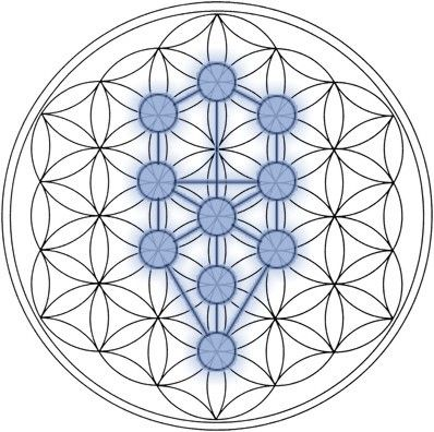The symbol of the Tree of Life may be derived from the Flower of Life. The Tree of Life is a concept, a metaphor for common descent, and a motif in various world theologies and philosophies.