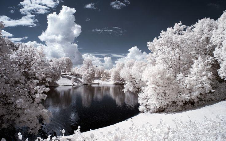 Winter Wonderland Desktop Wallpapers THIS Wallpaper