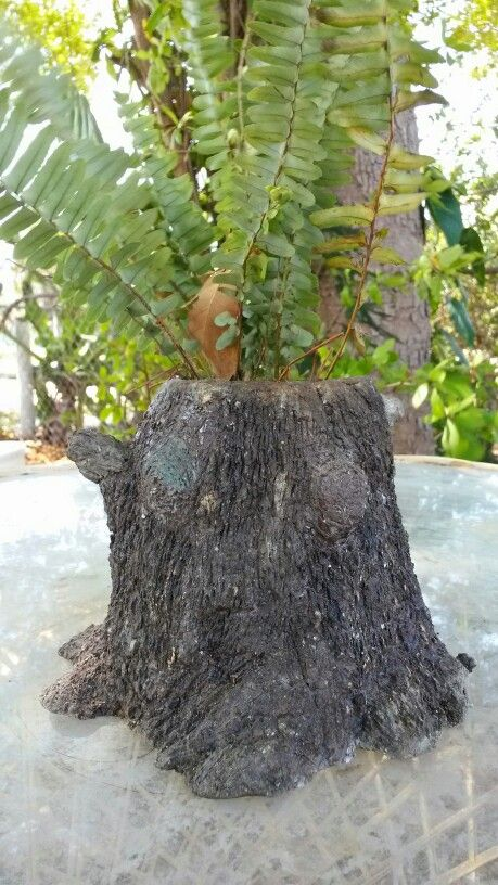 Hypertufa Tree Stump Planters Things I Have Made