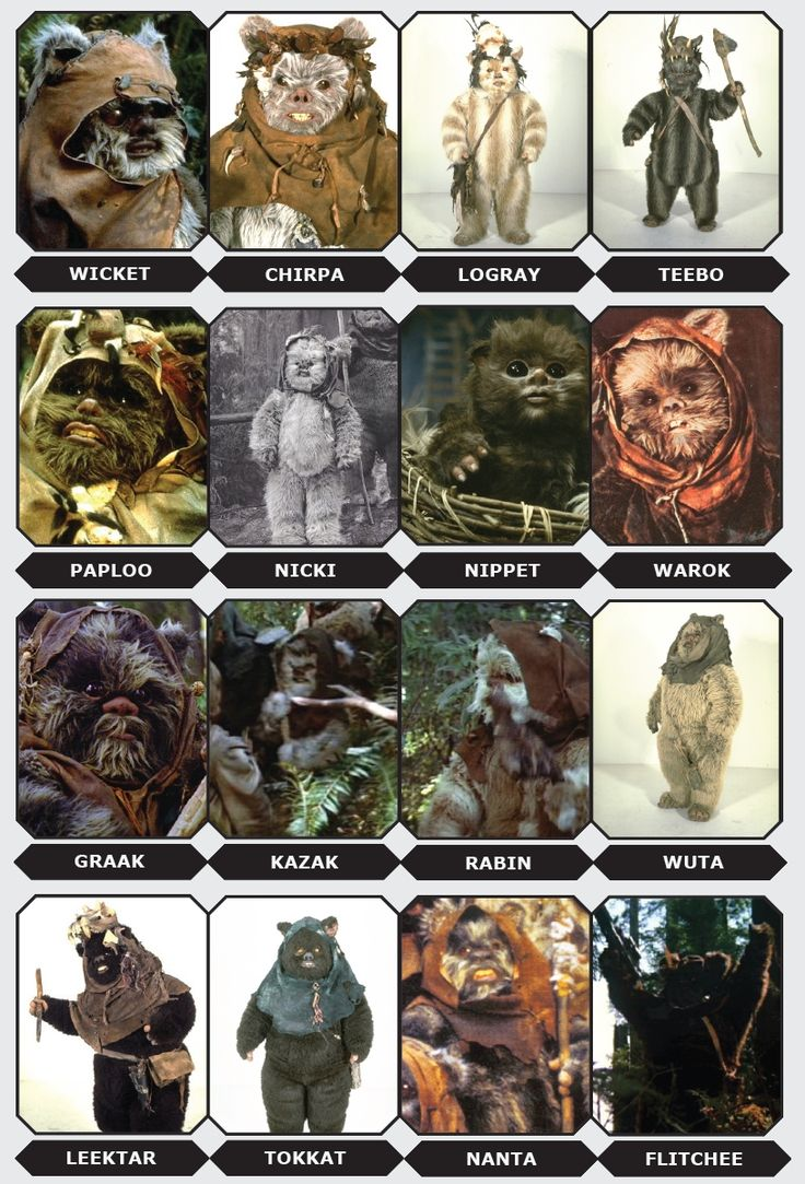 Meet the Ewoks from Endor | StarWars.com