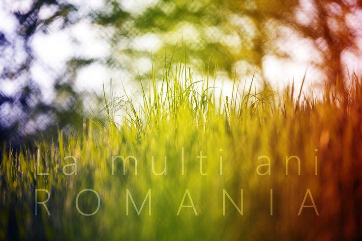 https://flic.kr/p/BAhVhM   La multi ani Romania!   Photo: Alexandru Matei Photography Setup: NIKON D610 + 70.0-200.0 mm f/2.8 Manual, @200 mm, 1/125 s, @f/2.8, ISO 100 (ambient light)
