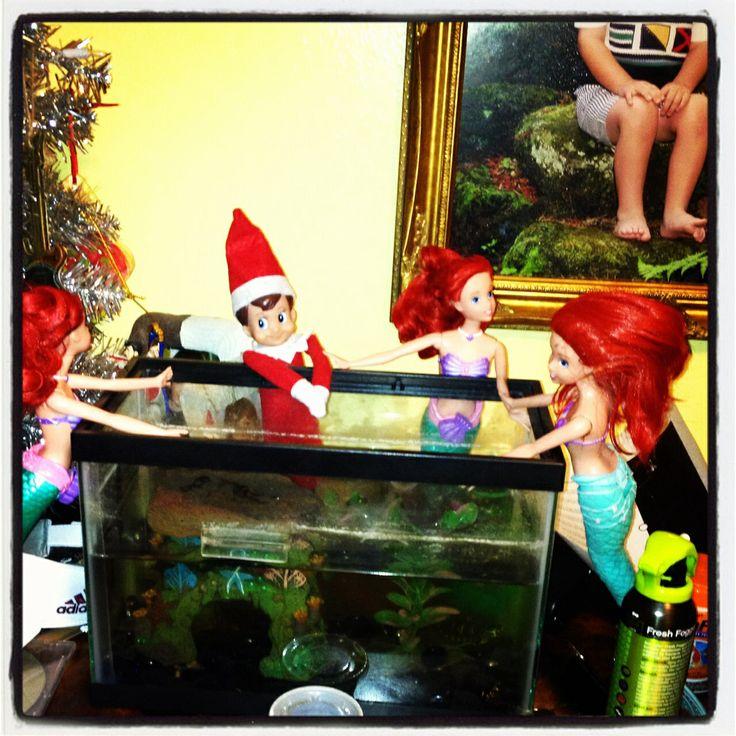 573 best everything elf on the shelf images on pinterest for Fish tank full movie